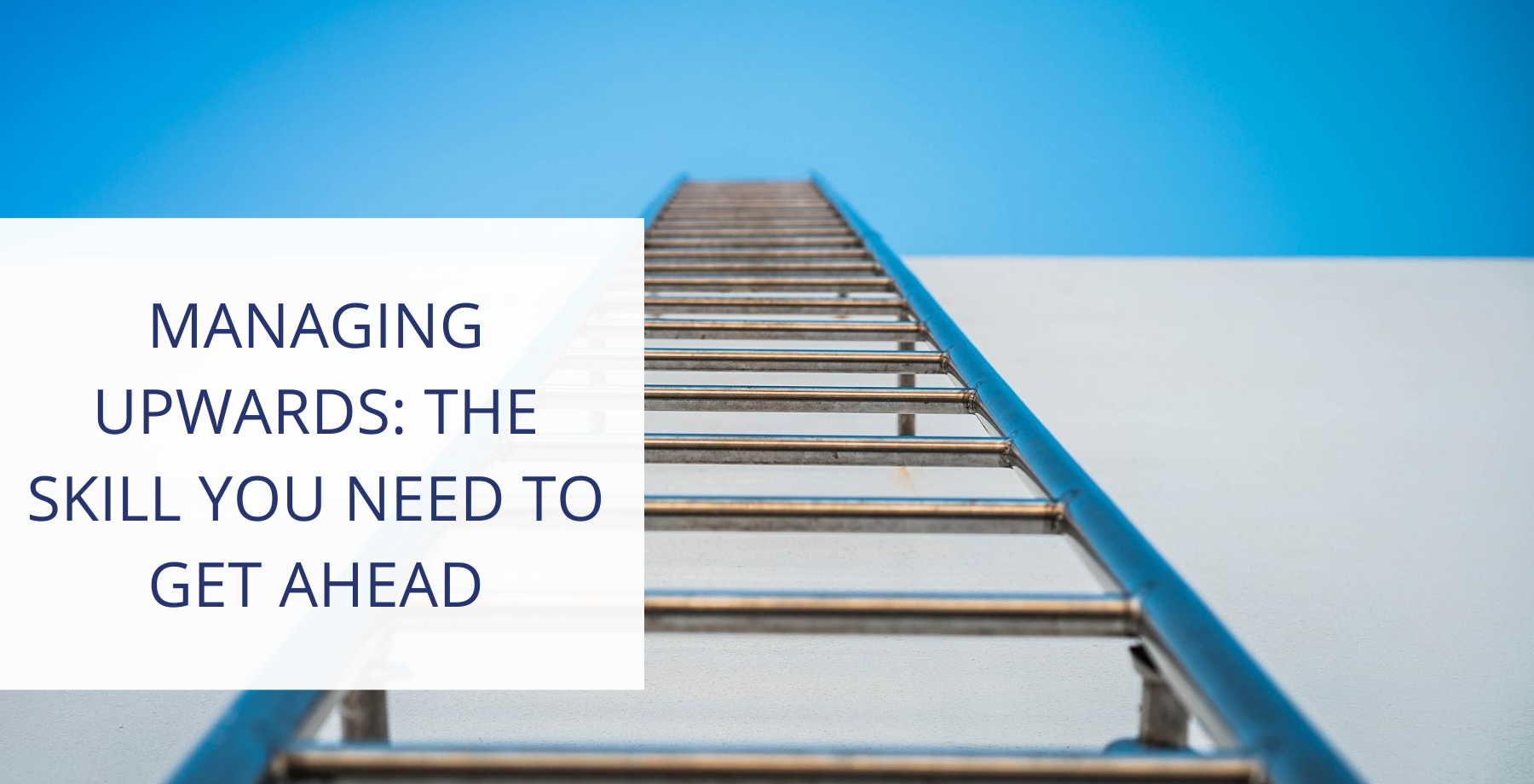 Ladder and blue sky professional growth concept